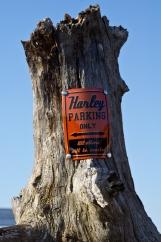 La cabane, une escale dédiée aux Harley Davidson